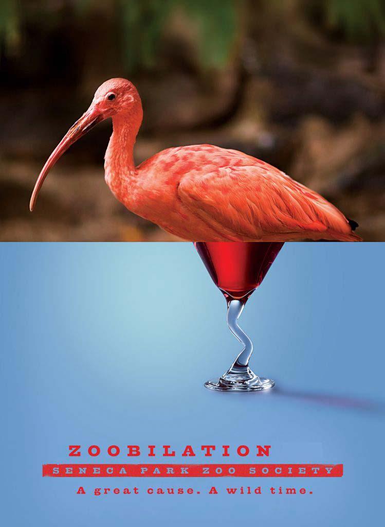 zoobilation flamingo