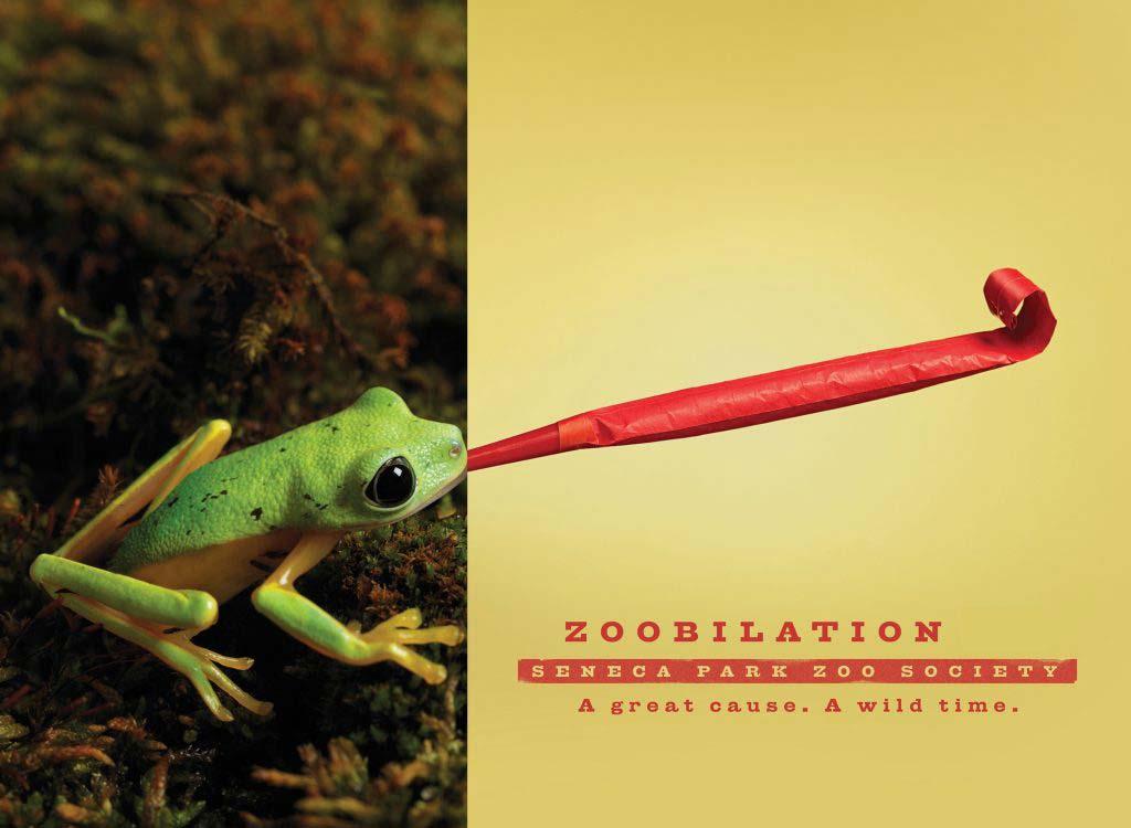 zoobilation frog
